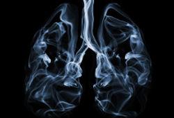 Comparaison entre des poumons noirs de fumeur et des poumons sains de non-fumeur