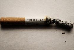 Les dangers du tabac pour la santé et l'environnement